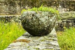 Roman Plant Pot fotografia stock libera da diritti