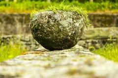 Roman Plant Pot fotografia stock