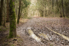 Roman road Royalty Free Stock Images