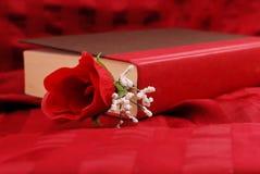 Roman Romance image libre de droits