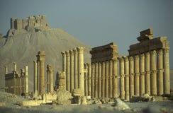 ROMAN RUÏNES VAN SYRIË PALMYRA Royalty-vrije Stock Afbeeldingen