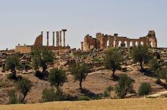 Roman Ruïnes van Volubillis Royalty-vrije Stock Foto