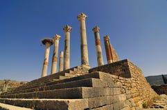 Roman Ruïnes van Volubillis Royalty-vrije Stock Foto's