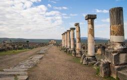 Roman ruïnes in Volubilis Stock Fotografie