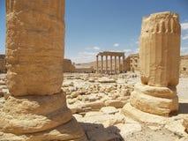 Roman ruins. Roman ancient ruins in desert, Palmyra Syria royalty free stock images