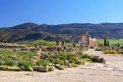 Roman ruins, ancient Roman city of Volubilis. Morocco Stock Photo