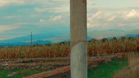 Roman Ruins de Sarmizegetusa em Deva, Romênia - ultra tiro do close-up video estoque