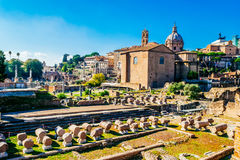 Roman ruins, Forum, in Rome, Italy Royalty Free Stock Image