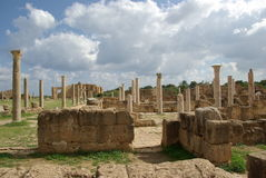 Roman Ruins In Leptis Magna, Libya Royalty Free Stock Photography