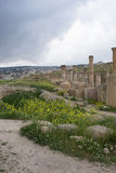 Roman Ruins Jerash Stock Photos