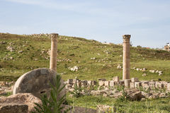 Roman ruins in the Jordanian city of Jerash (Gerasa of Antiquity) Stock Photography