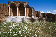 Roman ruins at Ostia Antica. With white flowers stock images