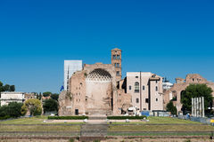 Roman ruins in Rome, Forum Royalty Free Stock Photography