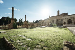 Roman ruins in Rome, Forum Royalty Free Stock Image