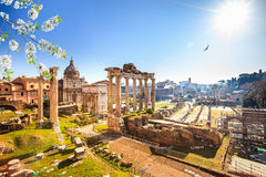 Roman ruins in Rome, Forum. Roman ruins in Rome at spring, Italy Stock Photos