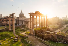 Roman ruins in Rome, Forum. At sunrise