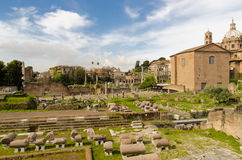 Roman ruins, Rome, Italy Royalty Free Stock Images
