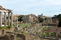 Roman ruins in Rome. Royalty Free Stock Photos