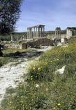Roman ruins- Tunisia Stock Photo