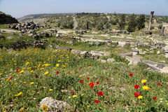 Roman ruins at Umm Qais (Umm Qays), Jordan Stock Images