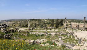 Roman ruins at Umm Qais (Umm Qays) --is a town in northern Jordan near the site of the ancient town of Gadara. Stock Photography