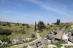 Roman ruins at Umm Qais (Umm Qays) --is a town in northern Jordan near the site of the ancient town of Gadara. Royalty Free Stock Images