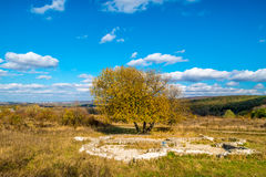 Roman ruins Villa Rustica under colorful autumn forest, hill,  November, Slovakia, near Bratislava Royalty Free Stock Photo