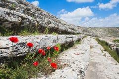 roman stadion arkivbild