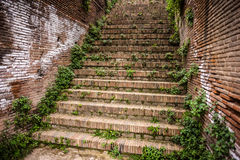 Roman stairs Royalty Free Stock Photo