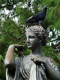 Roman Standbeeld royalty-vrije stock afbeelding
