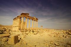 roman tempel för greckopalmyra Arkivbilder