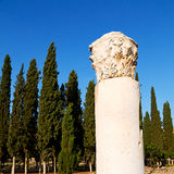and the roman temple history pamukkale    old construction in as Royalty Free Stock Photo