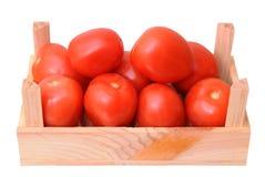 Roman tomato Stock Photos