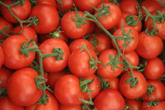 Roman Tomatoes. This is a macro shot of tomatoes on display in Rome's open-air market in Campo dei'Fiori Royalty Free Stock Photo