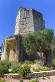 Roman toren in Nîmes, de Provence, Frankrijk Royalty-vrije Stock Foto's