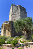 Roman tower in Nimes, Provence, France Royalty Free Stock Photos