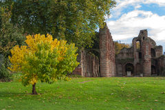 Colchester Essex UK autumn. St Botolphs Priory ruins Colchester Essex UK Royalty Free Stock Image