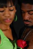 Romance Royalty Free Stock Photography