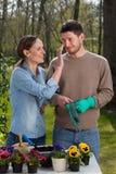 Romance в саде Стоковое Фото