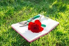 Romance в саде Стоковая Фотография