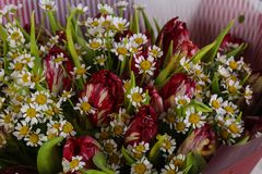 Romance flower bouquet. Romance bouquet with various flower Stock Photography