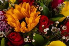 Romance flower bouquet. Romance bouquet with various flower Royalty Free Stock Images