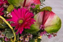 Romance flower bouquet. Romance bouquet with various flower Stock Image