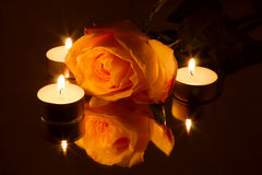 Romance : choisissez rose dans la lueur de chandelle Photo stock