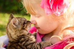 Romance d'enfant et de chat Photo stock