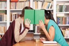 Romance de bibliothèque. Photographie stock libre de droits