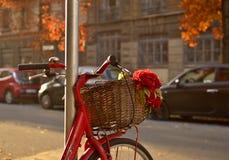 Romance de bicyclette Photo libre de droits