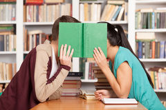 Romance de la biblioteca. Fotografía de archivo libre de regalías