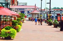 romance di amore della natura di bellezza del lato della passeggiata di Baltimora Maryland Fotografie Stock Libere da Diritti
