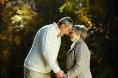 Romance di autunno Fotografia Stock
